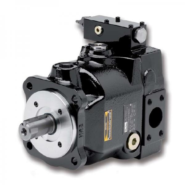 PAKER YB-E200 Piston Pump #2 image