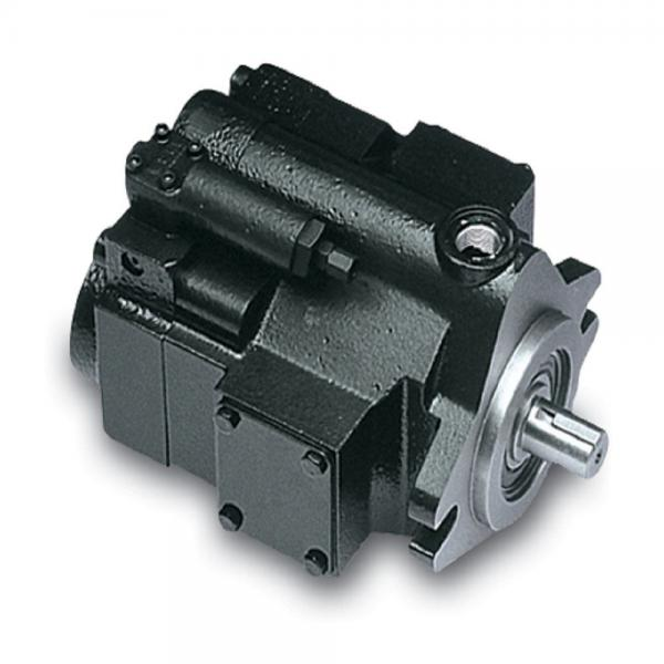 PAKER YB-E200 Piston Pump #1 image