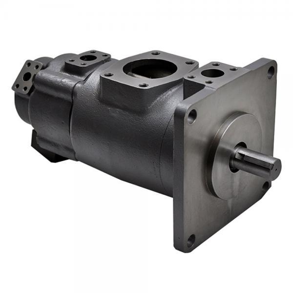Yuken PV2R14-12-200-F-RAAA-31 Double Vane pump #1 image